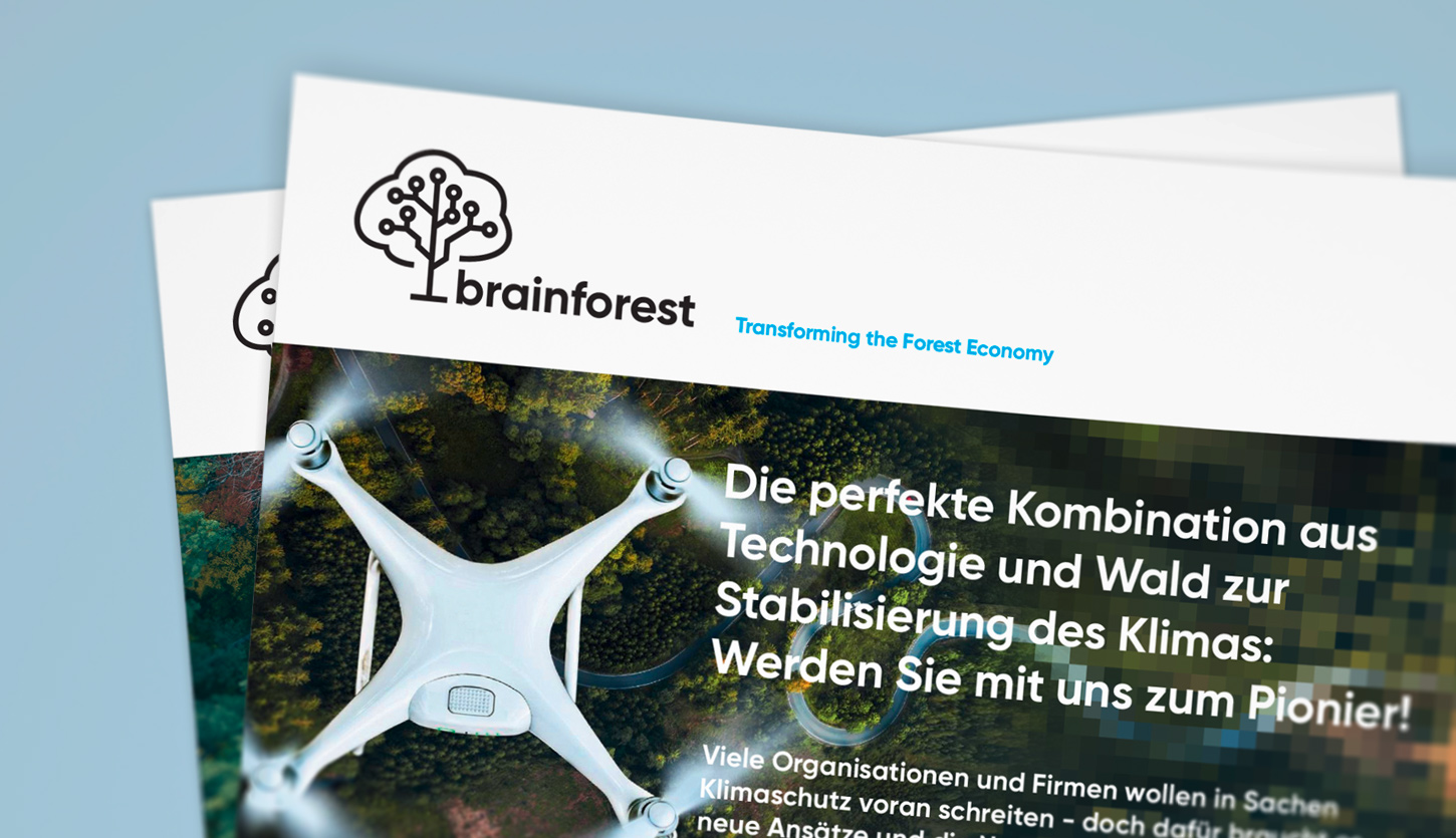 Case Brainforest Threepager